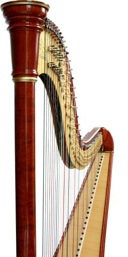 Harpist Portrait Image