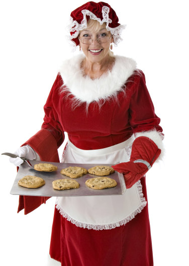 Mrs. Claus Portrait Image
