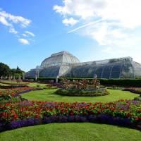 Kew Gardens: Priority Entrance