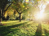 Best parks and green spaces in leafy North London for kids