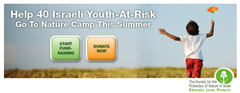 Help 40 Youth-At-Risk go to Nature Camp this summer