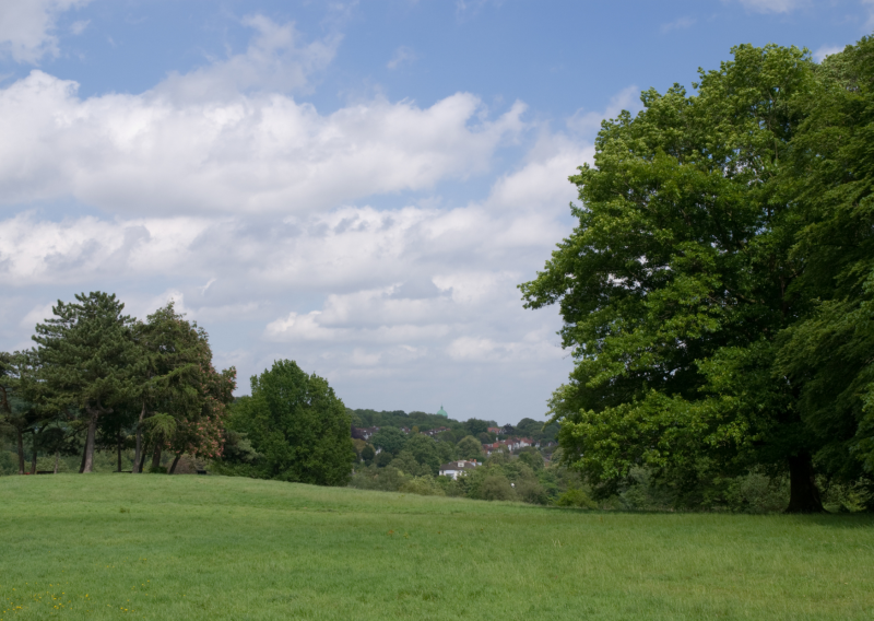 Hero for Green spaces are a lifeline