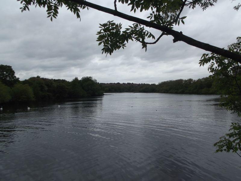 Hero for Row over state of Welsh Harp Reservoir