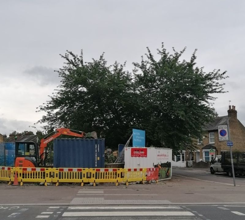 Hero for Anger after Walthamstow developer cuts down mature trees