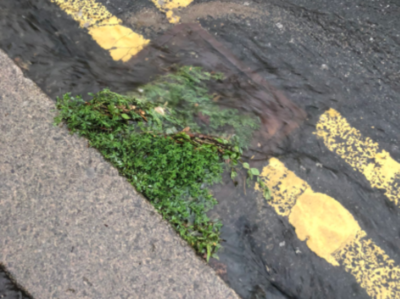 Hero for Council will not yet commit to more drain-cleaning after flooding