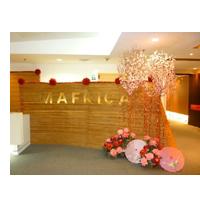 Mafrica Group logo