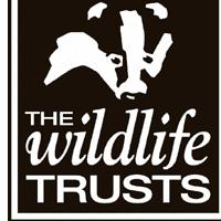 The Wildlife Trust logo