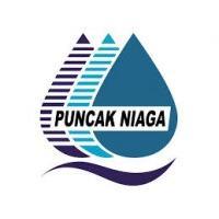 Puncak Niaga Construction logo