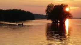 Ilok-die östlichste Stadt Kroatiens