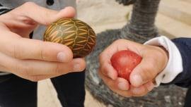 Fastenzeit, Karwoche und Ostern in Svetom Petru u Šumi