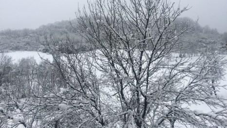 Schnee in Slawonien