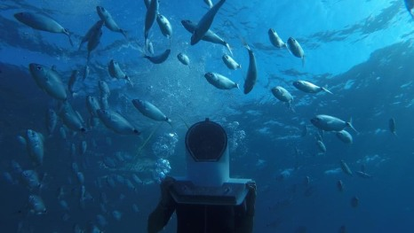 Šetnja morskim dnom