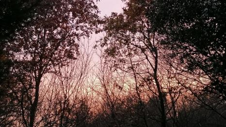 Jesenje predvečerje (Foto: Mariola Bušljeta Nežić)
