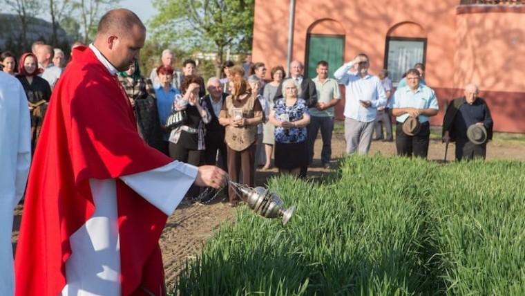 """Jedna od mnogih manifestacija """"Dužijance"""" je posveta žita (Foto: Facebook)"""