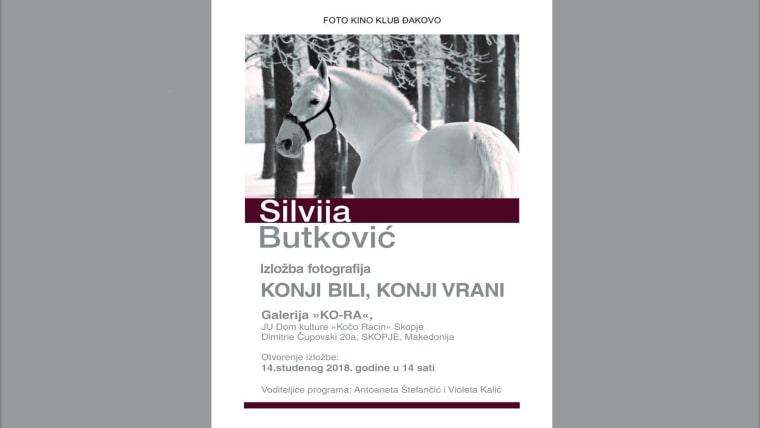 """""""Konji bili, konji vrani"""" u Skoplju"""
