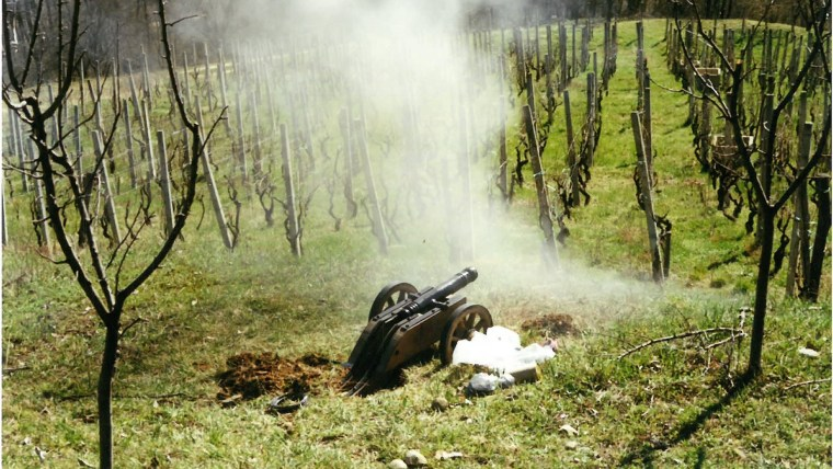 A cannon blast on Grgurevo (Photo: Voice of Croatia)
