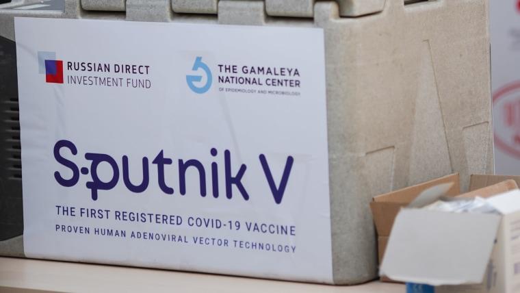 Der russische Impfstoff Sputnik V, könnte auch in Kroatien zum Einsatz kommen (Foto: Dejan Rakita/PIXSELL)