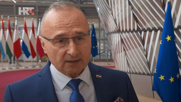 Foreign and European Affairs Minister Gordan Grlić Radman (Screenshot: HRT)