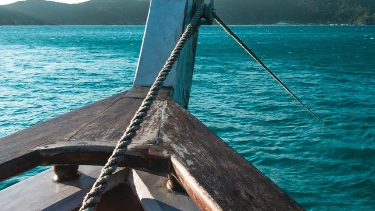 Ilustracija (Foto: pexels.com)