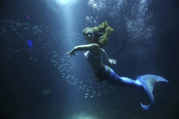 Live 'mermaid' floating in water