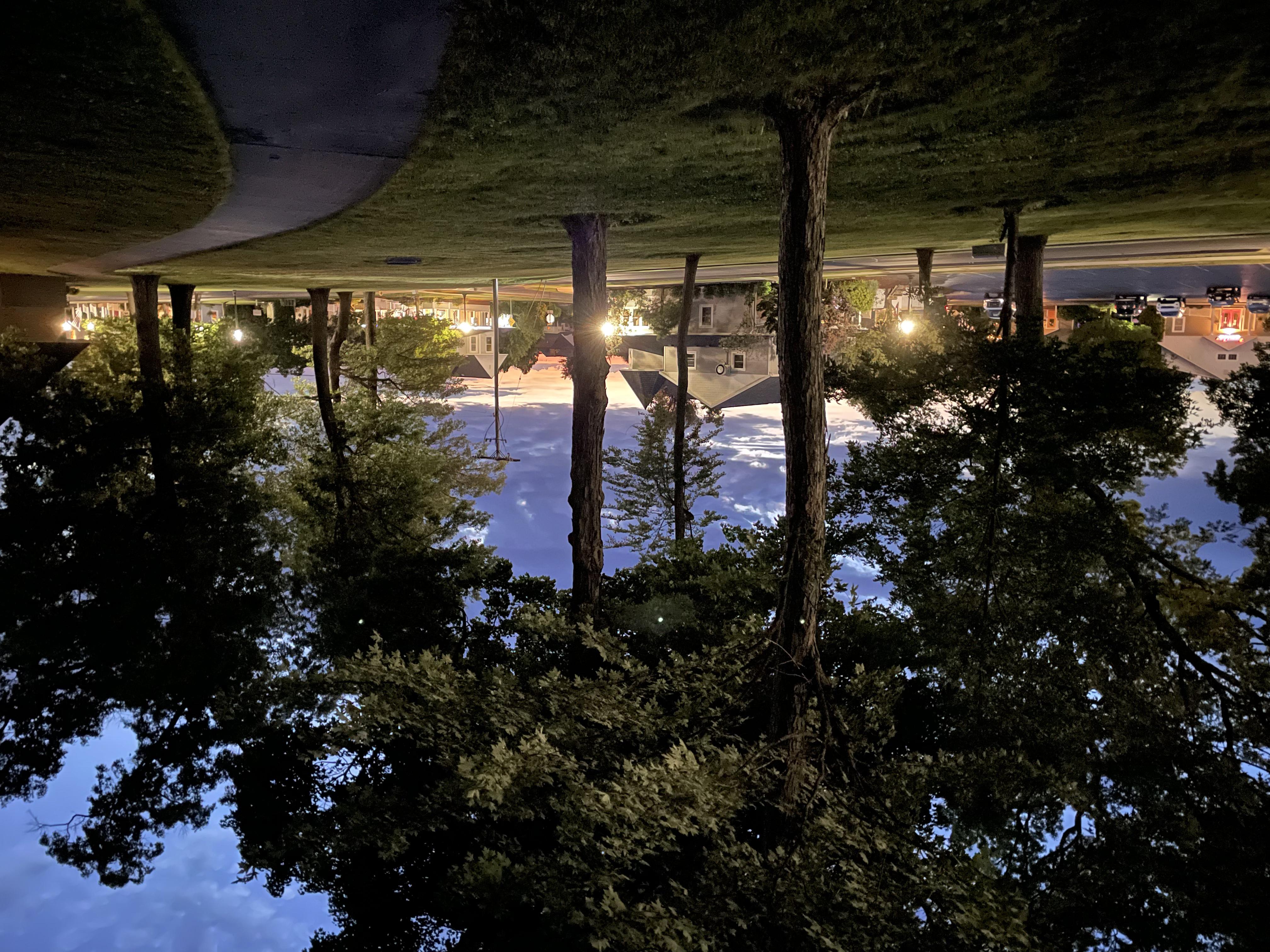 Light Rail Café & Roaster, seen through the trees across Park Avenue