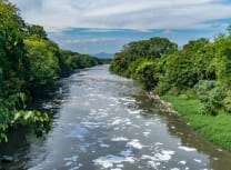 The Bogotá river has suffered from industrial discharges that have created dead zones along its length (Dreamstime)
