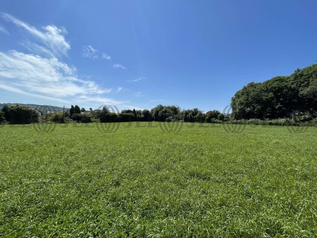 Land Nailsea, BS48 4PQ - Land At Trendlewood Way