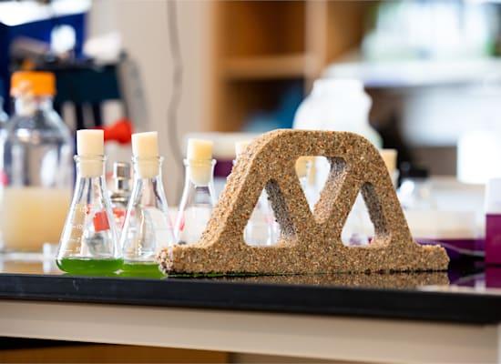 פיתוח של בטון חי במעבדה של פרופ' ויל סרובר / צילום: University of Colorado Boulder College of Engineering and Applied Science