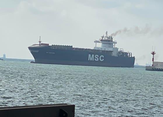 האנייה עוגנת בנמל / צילום: חברת MSC