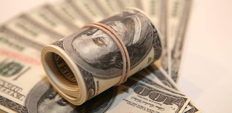 שטרות דולרים / צילום: עינת לברון