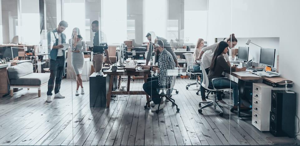 עבודה משרדית / צילום: Shutterstock, Shutterstock