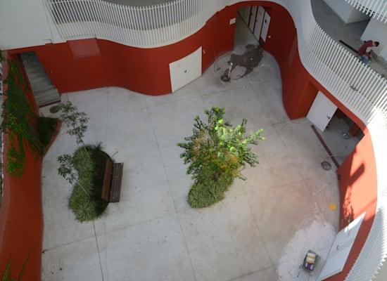 """החצר הפנימית בבניין ברחוב פין 1 בת""""א / צילום: איל יצהר"""