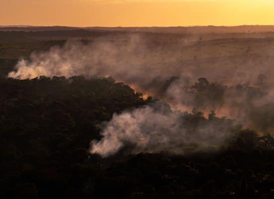 השריפות ביערות הגשם / צילום: Christian Braga, Greenpeace