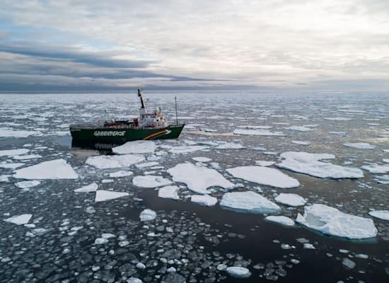הקרח מפשיר בים הארקטי / צילום: Daniella Zalcman / Greenpeace