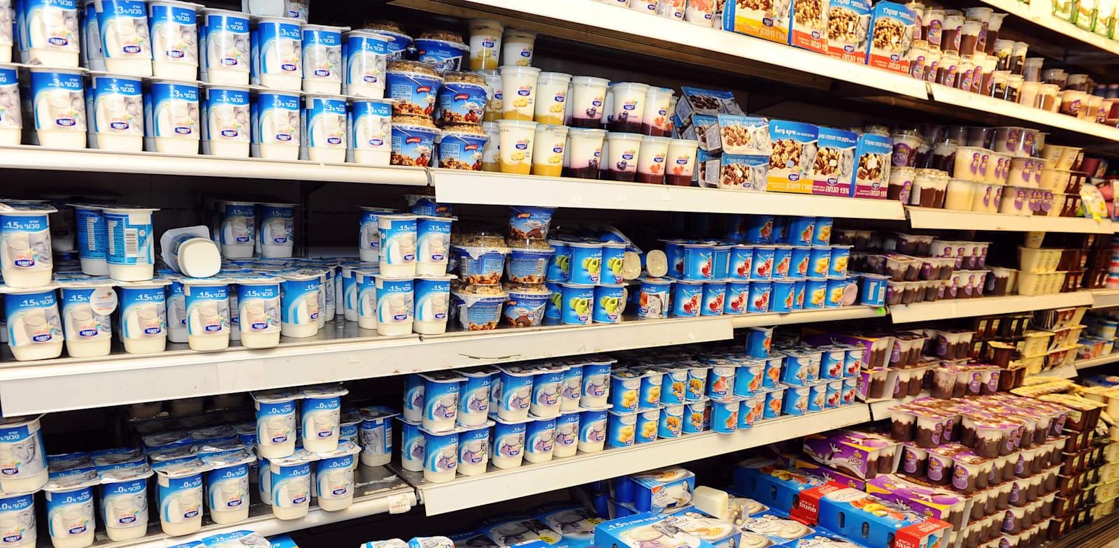מקרר עם מוצרי חלב בסופרמרקט / צילום: תמר מצפי