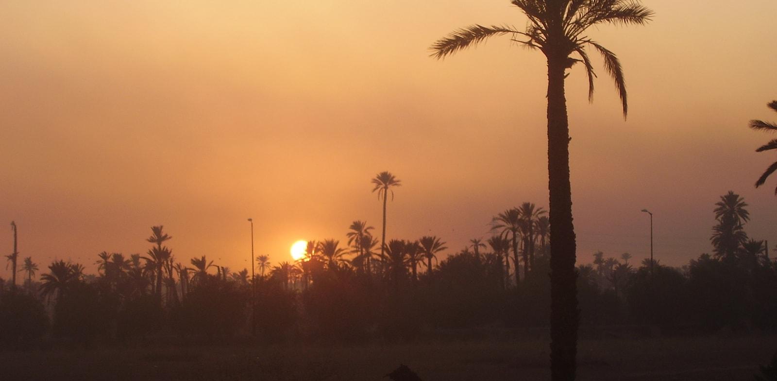 זריחה במרוקו / צילום: טל וולק