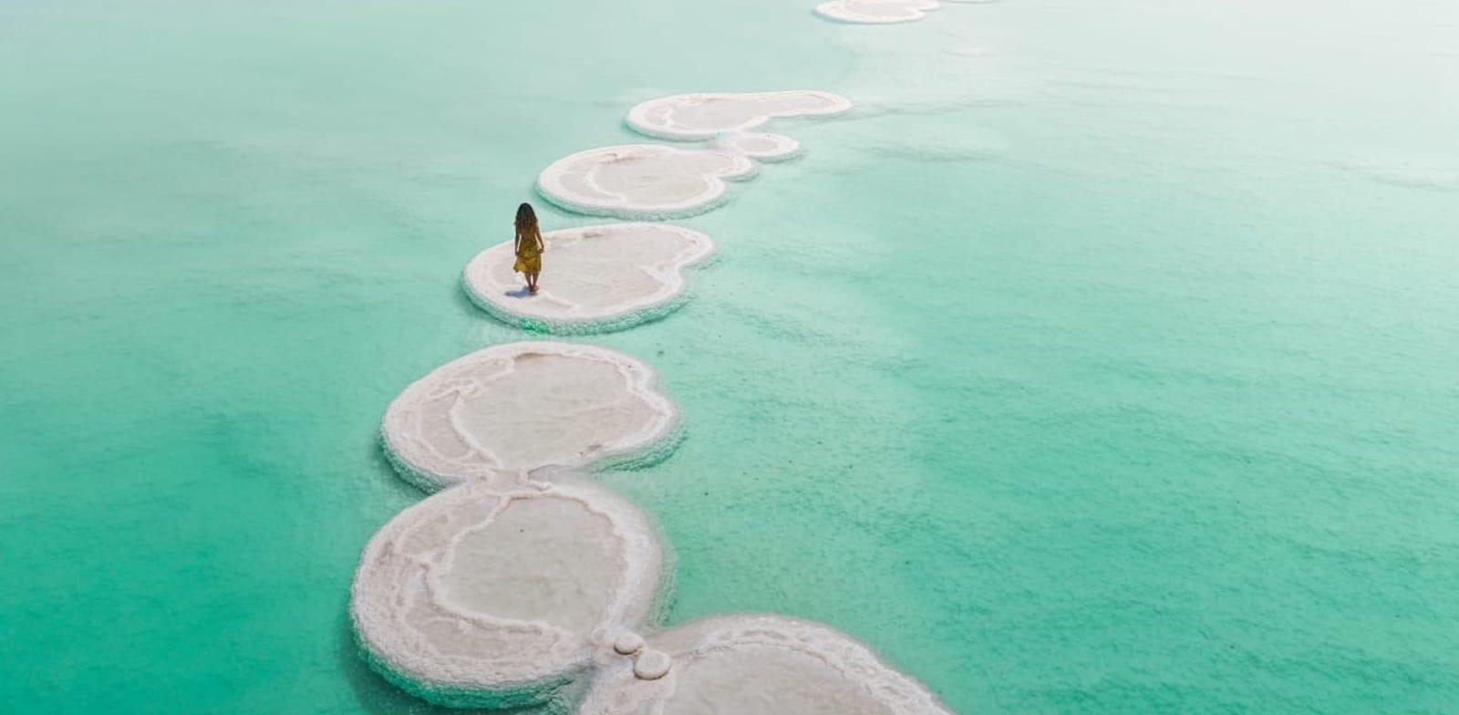 פטריות ים המלח / צילום: גל טוויג