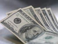 דולרים / צילום: עינת לברון