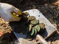 חפירה ארכיאולוגית / צילום: רויטרס