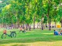 אנשים נהנים בפארק / צילום: Shutterstock, Shutterstock