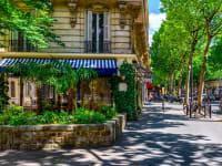 שדרה בפריז. 50% מהעיר יכוסו בצמחיה / צילום: Shutterstock