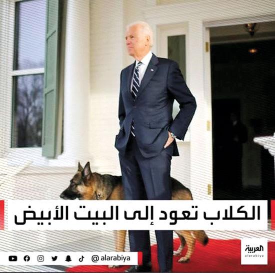 """""""אל ערבייה"""" בעלבון לביידן: """"הכלבים חוזרים לבית הלבן"""" / צילום: צילום מסך"""