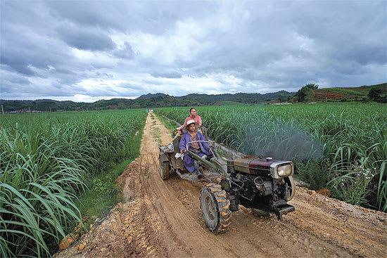 חקלאים בכפר שישואנגבאנה, 2019 / צילום: Reuters, Aly Song