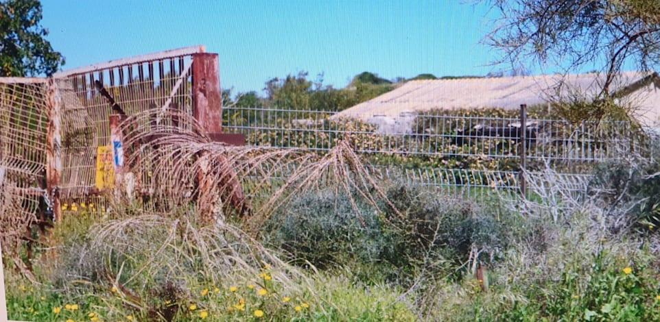 הכניסה למפעל הישן של תעש באפולוניה. היתר הבנייה מותנה בטיפול בקרקע המזוהמת / צילום: בר - אל