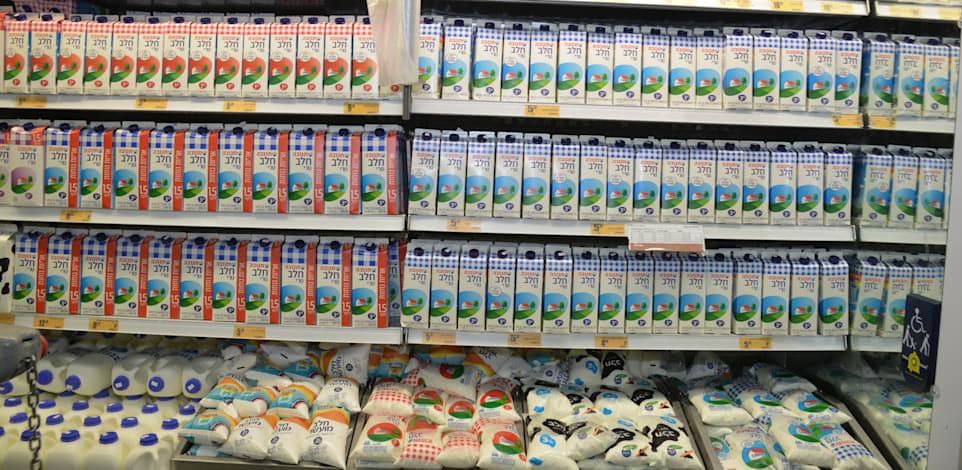 מעדנים + מקרר חלב + קניות + מבצעים לחגים - שופרסל דיל / צילום: תמר מצפי