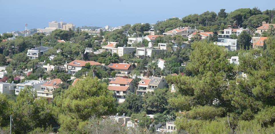 שכונת דניה בחיפה / צילום: איל יצהר