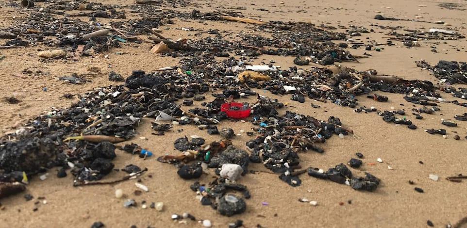 הצטברות זפת על חוף הים / צילום: מרכז למחקר סביבתי חיפה