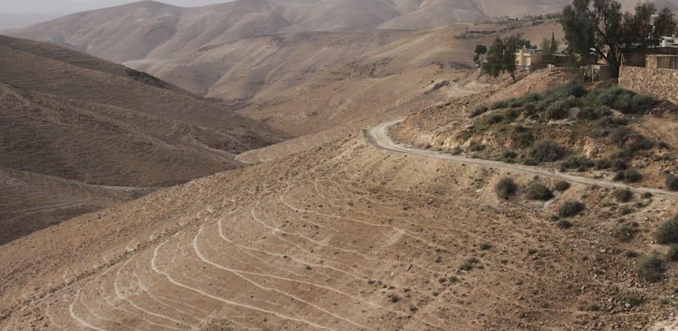 העיר ערד בנויה על שלוחות, כך שהטבע העירוני חודר אליה ומקרב את המדבר לחצרות / צילום: אורלי גנוסר