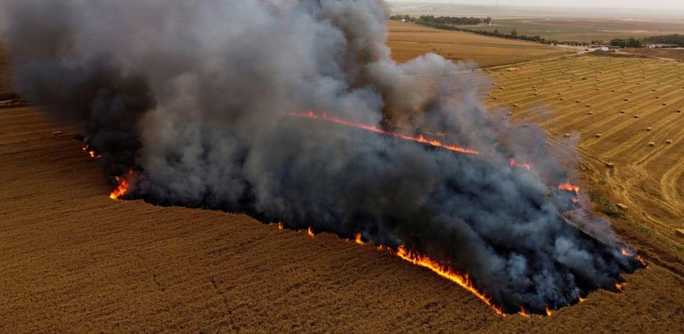 שדה חיטה ליד ניר עם עולה בלהבות לאחר שבלוני תבערה נשלחו מעזה / צילום: Shutterstock, Amir Cohen