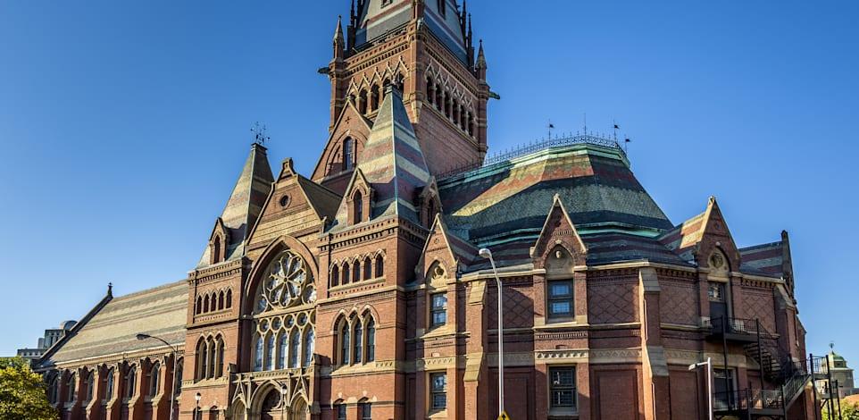 אוניברסיטת הרווארד / צילום: Shutterstock